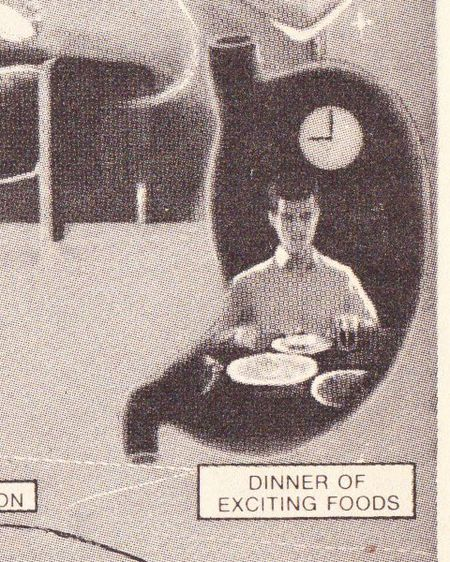 Nocturnal-dinner